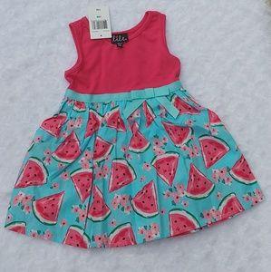 Lilt Baby Girl Watermelon Dress Pink Blue NWT